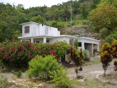 Jamaican Mountain-top House & Land