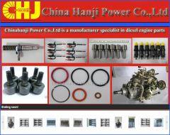 Repair Kit VE pump parts 800001