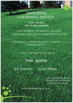 DAVID DOYLE GARDENING SERVICES