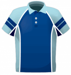 Custom Polo Shirts from Team Colours
