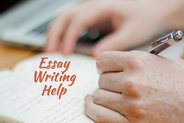 Thesis Statement Examples to Inspire Your Next Argumentative Essay    Essay Writing