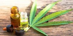 Register Your Interest: Medical Cannabis Educational Seminar (Edinburgh)