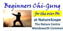 Over 50s Chi Gung (Qigong)