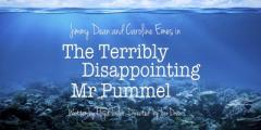 The Terribly Disappointing Mr Pummel