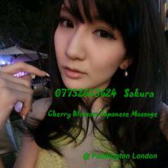 Sakura - Intelligent Japanese Girl In London