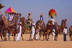 Pushker Fair And Festival Tour Packages In Rajas