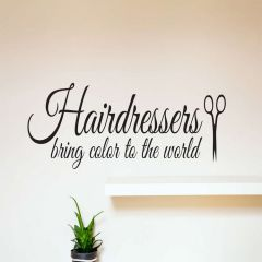 Hairdressers bring colour to the world wall decal