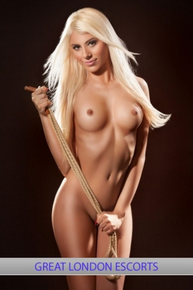 chico hott escorts