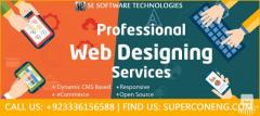 Professional Website Designing And Development Service