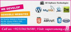 Website Development & Design for business