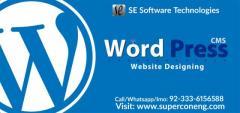 Excellent wordpress website Design Service