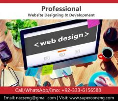 Professional Website Development and Designing Services