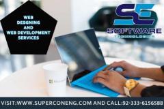 Professional Web Designs Service Company SE Software T