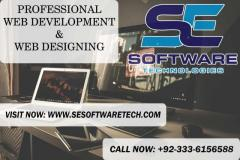 Require A Website Design and Build   SE Software Tech