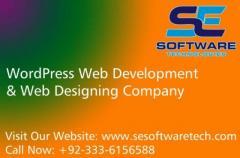Professional WordPress Website Development Services