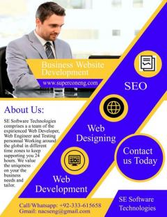 Business Website Development  Web Designing  SEO Se