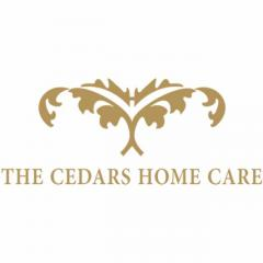 Replacement care Totteridge