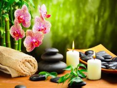 Enjoy The Best Massage In Town Today