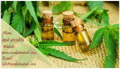 Where to buy cannabis oil