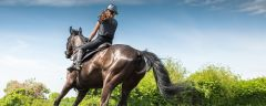 Riding School in Northamptonshire and Cambridgeshire