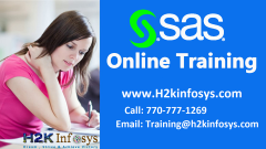 SAS Training & Placement Assistance In Atlanta