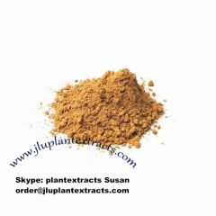 Guarana Seed Extract Raw Pure Powder Best Price