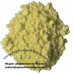 Top Quality Baicalin Raw Powder Online