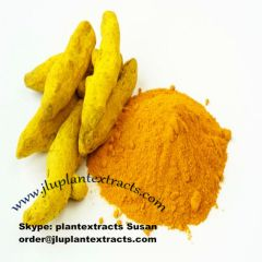 Buy Best Curcumin Powder Online