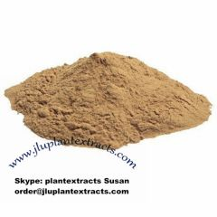 Buy Radix Paeoniae Alba Extract online best price