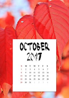 Calendar Printing Services In London