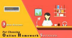 Accounting Homework Help in UK