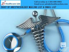 Chief of Anesthesiology Email Database in UK