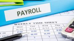 Tailor International Payroll Strategy with Experts