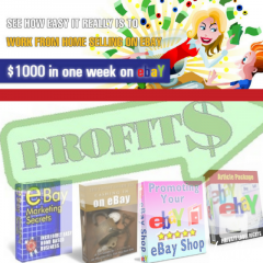 45x How-To Make Money Selling On Ebay Ebooks