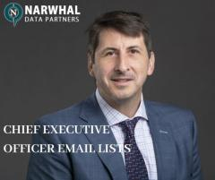 Chief Executive Officer Email List in USA