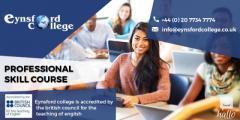 Professional Skill course