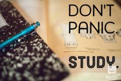 Microsoft 70-742 Exam Updated Study Material - D