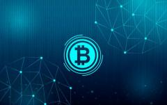 Seek Support from An Ultimate Blockchain Company