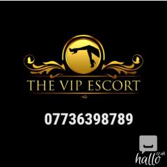 Busy Agency - Escorts Required - Any nationality