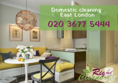 Domestic cleaning East London - Forest Gate, Hackney...