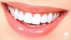 Tooth Regeneration As A Future Dental Treatment