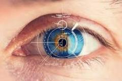 For Repairing An Orbital Fracture Or Eye Socket