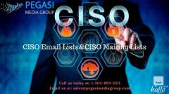 CISO Email Lists  CISO Mailing Lists in UK