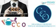 COO Email Lists  COO Mailing Lists in UK