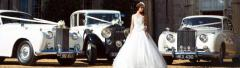 Wedding Transport & Car Hire From Premier Carriage