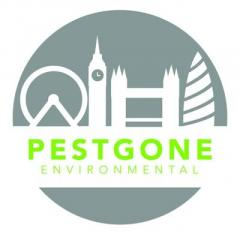 Wasp Nest Treatment - Pestgone Environmental