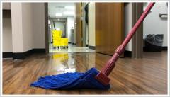 Hire Professional Cleaners for Daily Office Cleaning